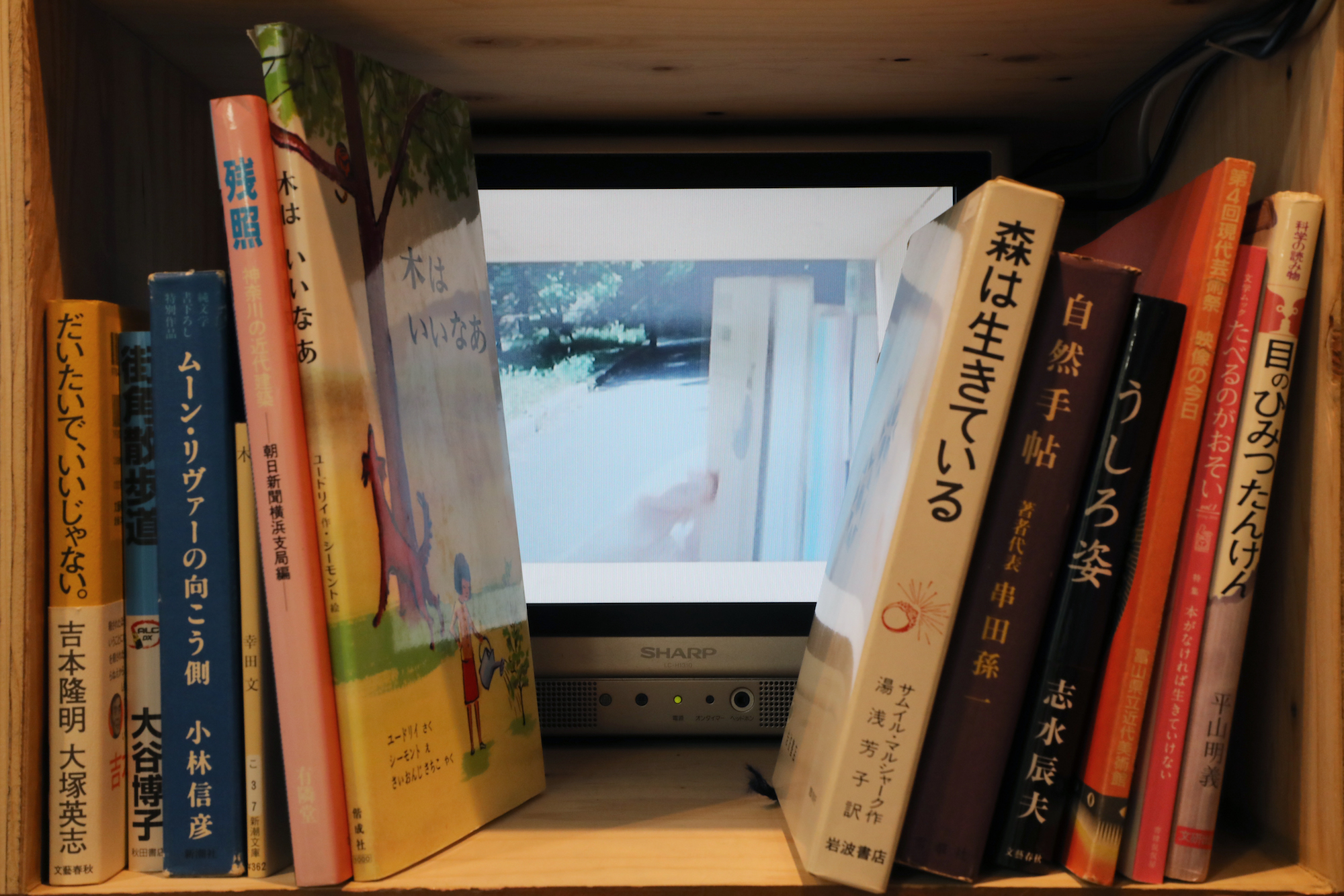 長田雛子 小林椋 二人展「無・ねじらない」2017.5.2-14 ©︎ コ本や honkbooks